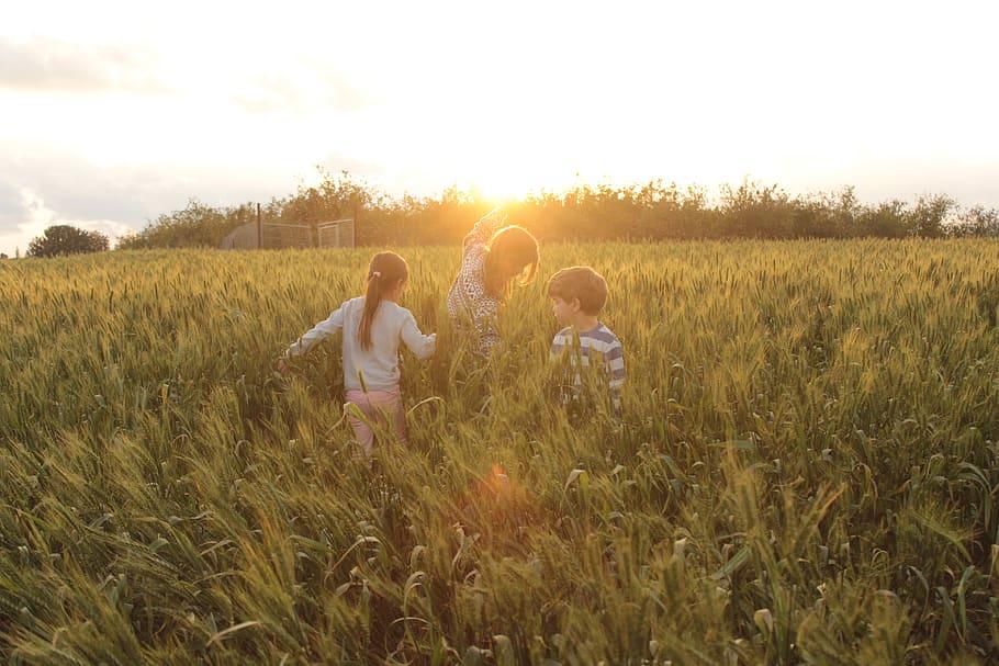 children's-playing-in-field