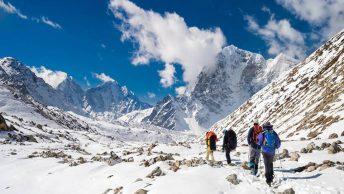 Hold professional trek service for safe trek